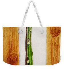 Asparagus Tasty Botanical Study Weekender Tote Bag by Irina Sztukowski