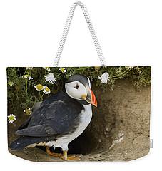 Atlantic Puffin At Burrow Skomer Island Weekender Tote Bag by Sebastian Kennerknecht