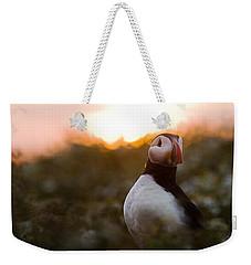 Atlantic Puffin At Sunrise Skomer Weekender Tote Bag by Sebastian Kennerknecht