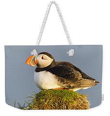 Atlantic Puffin Iceland Weekender Tote Bag by Peer von Wahl