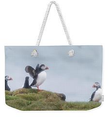 Atlantic Puffins Fratercula Arctica Weekender Tote Bag by Panoramic Images