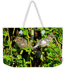 Babies Afraid To Fly Weekender Tote Bag by Frozen in Time Fine Art Photography