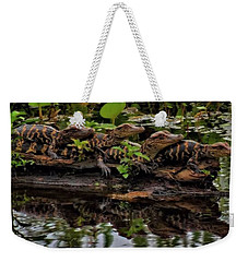 Baby Alligators Reflection Weekender Tote Bag by Dan Sproul
