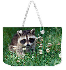 Baby Raccoon Weekender Tote Bag by Jeanne White