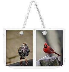 Backyard Bird Set Weekender Tote Bag by Heather Applegate