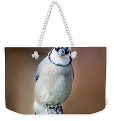 Backyard Birds Blue Jay Weekender Tote Bag by Bill Wakeley