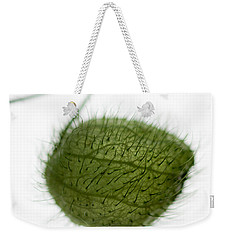 Balloon Plant Weekender Tote Bag by Dave Bowman