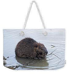 Beaver Chewing On Twig Weekender Tote Bag by Chris Flees