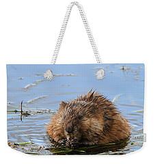 Beaver Portrait Weekender Tote Bag by Dan Sproul