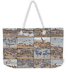 Birds Of Many Feathers Weekender Tote Bag by Betsy Knapp