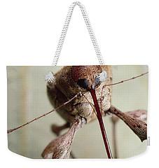 Black Oak Acorn Weevil Boring Into Acorn Weekender Tote Bag by Mark Moffett