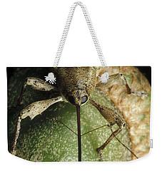 Black Oak Acorn Weevil On Acorn Weekender Tote Bag by Mark Moffett