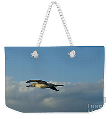 Blue-footed Booby Weekender Tote Bag by William H. Mullins