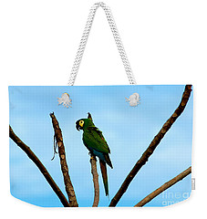 Blue-winged Macaw, Brazil Weekender Tote Bag by Gregory G. Dimijian, M.D.