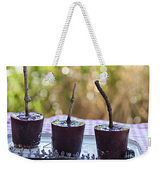 Blueberry Ice Pops Weekender Tote Bag by Juli Scalzi
