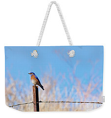 Bluebird On A Post Weekender Tote Bag by Mike  Dawson