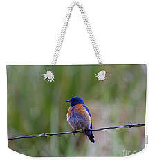 Bluebird On A Wire Weekender Tote Bag by Mike  Dawson
