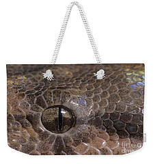 Boa Constrictor Weekender Tote Bag by Chris Mattison FLPA
