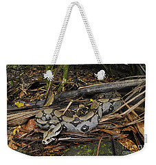 Boa Constrictor Weekender Tote Bag by Francesco Tomasinelli