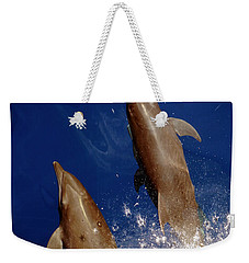 Bottlenose Dolphins Tursiops Truncatus Weekender Tote Bag by Anonymous
