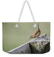 Carolina Wren Two Weekender Tote Bag by Heather Applegate