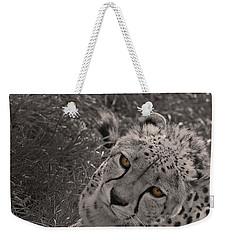 Cheetah Eyes Weekender Tote Bag by Martin Newman