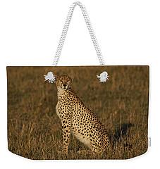 Cheetah On Savanna Masai Mara Kenya Weekender Tote Bag by Hiroya Minakuchi