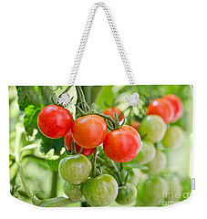 Cherry Tomatoes Weekender Tote Bag by Delphimages Photo Creations