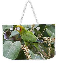 Chiriqui Conure 2 Weekender Tote Bag by Heiko Koehrer-Wagner