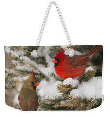 Christmas Card With Cardinals Weekender Tote Bag by Mircea Costina Photography