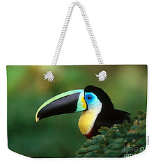 Citron-throated Toucan Weekender Tote Bag by Art Wolfe