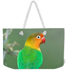 Close-up Of A Fischers Lovebird Weekender Tote Bag by Panoramic Images