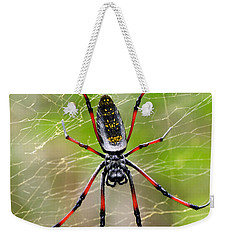 Close-up Of A Golden Silk Orb-weaver Weekender Tote Bag by Panoramic Images