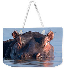 Close-up Of A Hippopotamus Submerged Weekender Tote Bag by Panoramic Images
