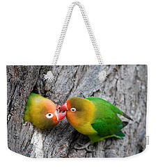 Close-up Of A Pair Of Lovebirds, Ndutu Weekender Tote Bag by Panoramic Images