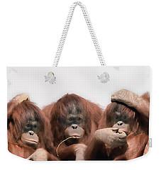 Close-up Of Three Orangutans Weekender Tote Bag by Panoramic Images