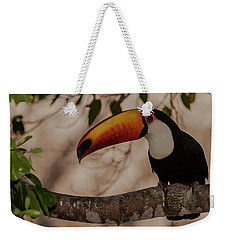 Close-up Of Tocu Toucan Ramphastos Toco Weekender Tote Bag by Panoramic Images