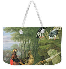 Cock Pheasant Hen Pheasant And Chicks And Other Birds In A Classical Landscape Weekender Tote Bag by Pieter Casteels