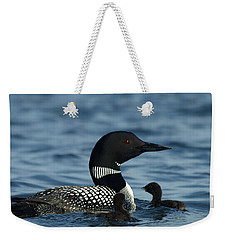 Common Loon Family Weekender Tote Bag by James Peterson
