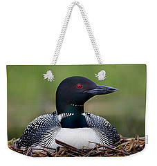 Common Loon On Nest British Columbia Weekender Tote Bag by Connor Stefanison