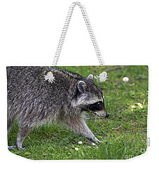 Common Raccoon Weekender Tote Bag by Sharon Talson