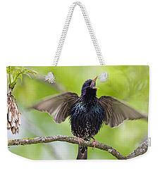 Common Starling Singing Bavaria Weekender Tote Bag by Konrad Wothe