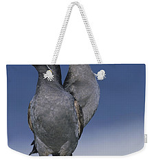 Crested Auklet Pair Weekender Tote Bag by Toshiji Fukuda
