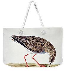 Curlew Sandpiper Weekender Tote Bag by Charles Collins