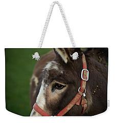 Donkey Weekender Tote Bag by Shane Holsclaw