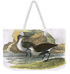 Dunlin Weekender Tote Bag by English School