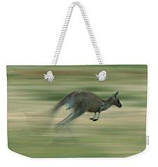 Eastern Grey Kangaroo Female Hopping Weekender Tote Bag by Ingo Arndt