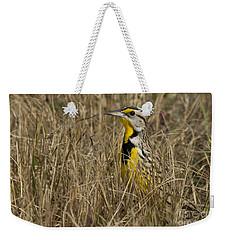 Eastern Meadowlark Weekender Tote Bag by Meg Rousher