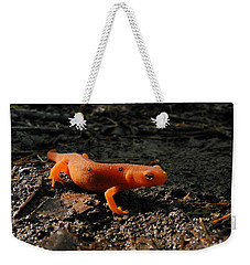 Eastern Newt Red Eft Weekender Tote Bag by Christina Rollo