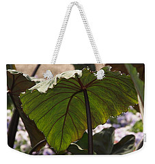 Elephant Ear Weekender Tote Bag by James Peterson